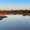 A Hippo Near the Nsemani Dam