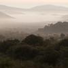 Valley in Morning