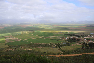 Wine country in South Africa
