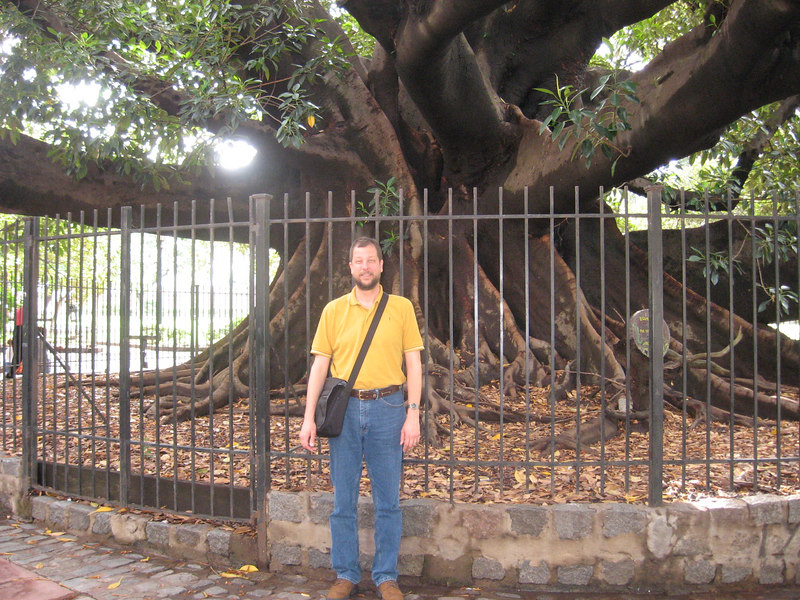 "David in front of a huge ficus or ""rubber"" tree in one of the parks."