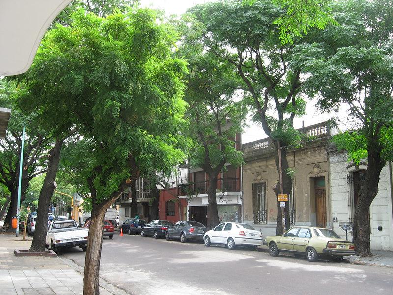 Street scene in the leafy Palermo neighborhood.