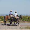 Gauchos heading to the vineyards near Tupungato, Argentina.