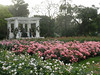 The Rose Garden, beautiful even in springtime (the very beginning of November).