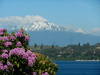 From Puerto Varas you can actually see two volcanoes, but only one is a perfect cone.