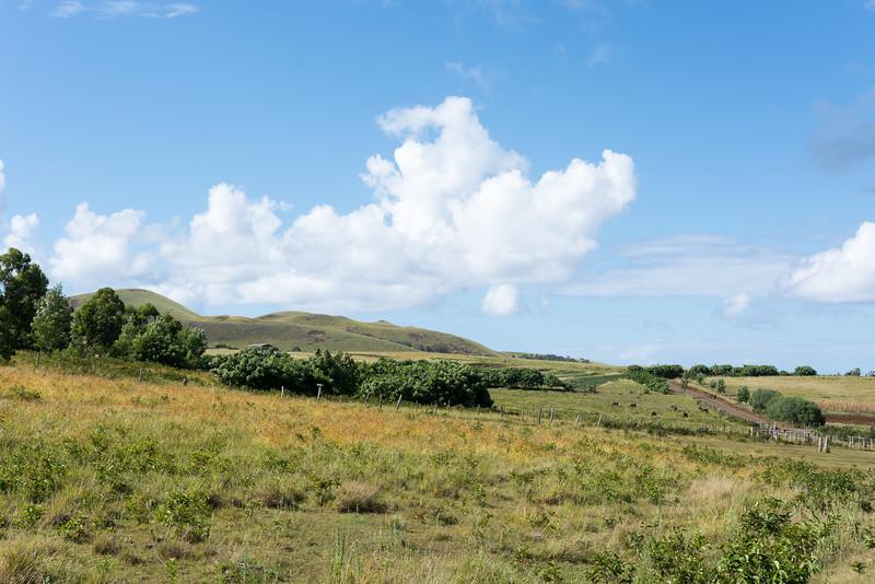 Easter Island Farms