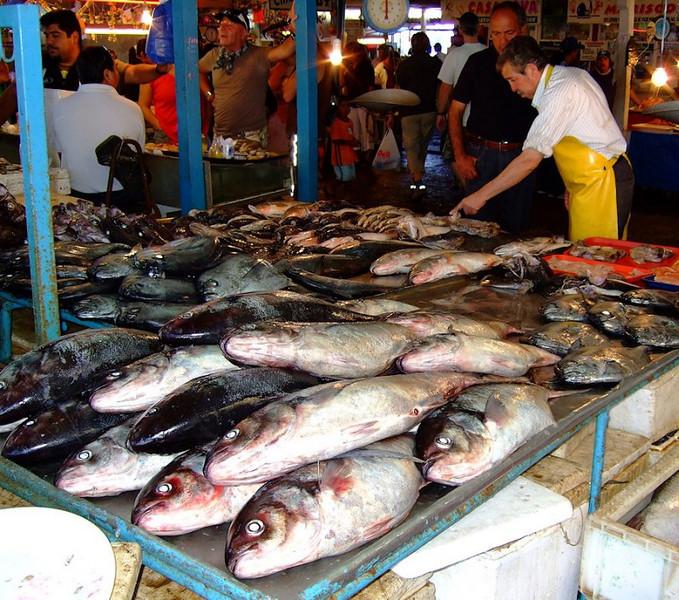 Fish Market Coquimbo (94282275)