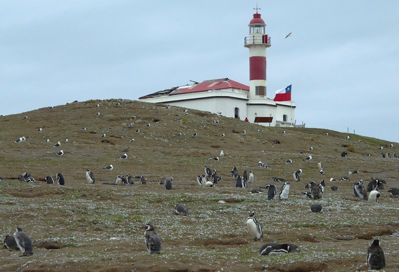 Lighthouse on Magdalena Island (94388132)