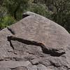 petroglyphs on rocks near Sogay