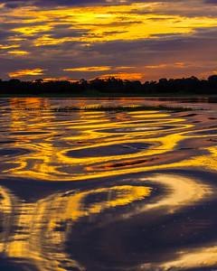 Abstract Amazon sunset
