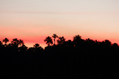 Amazon basin skyline Copyright 2012, Tom Farmer