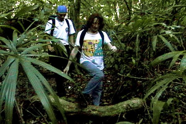 Celia hiking through the jungle