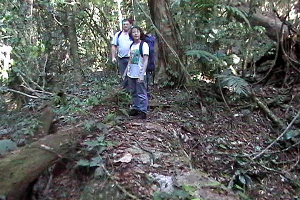Celia & Barry - Traversing a fallen log in the jungle