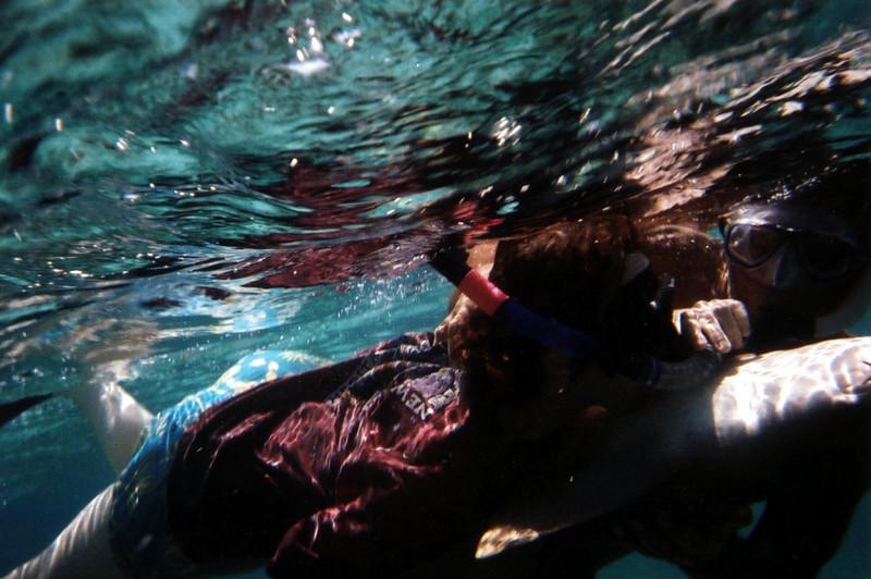 Celia Kissing Shark