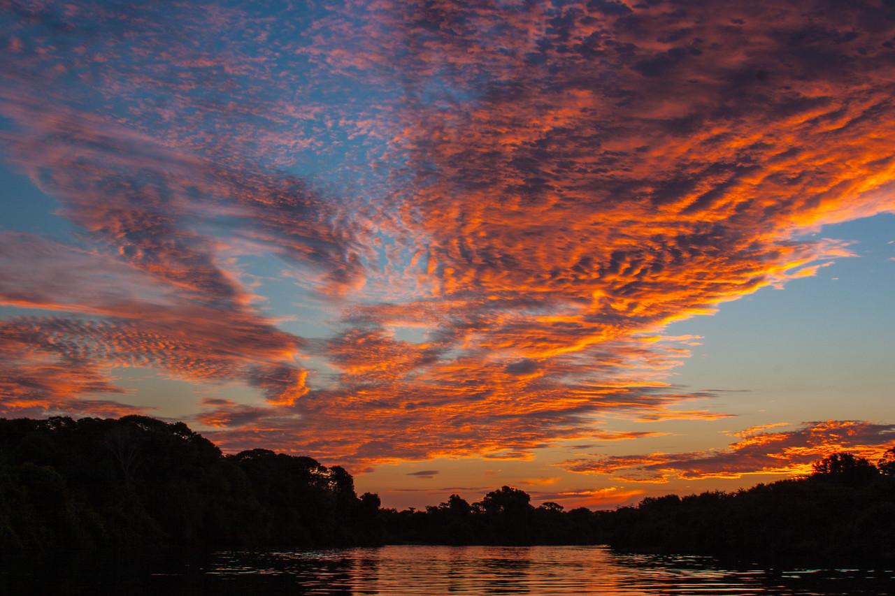 Fazenda Barranco Alto, The Pantanal, Brazil, 2004