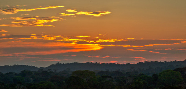 Sunset over the Rainforest