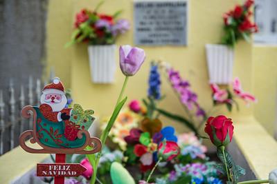Cemetery .... Punta Arenas