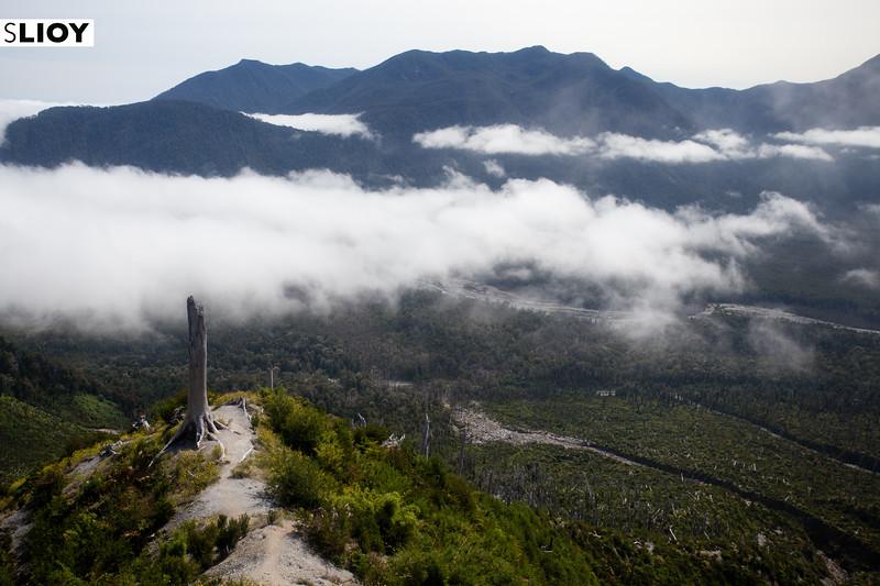Climbing the Volcan Chaiten trail in Chilean Patagonia's Parque Pumalin.