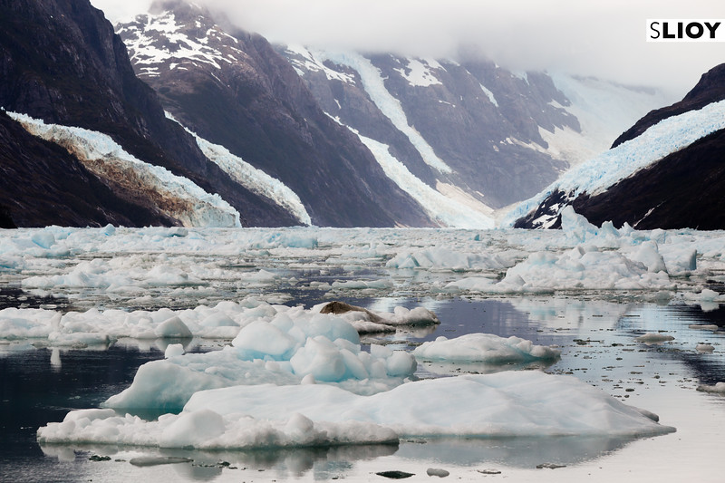 Icebergs in the Calvo Fjord in Chilean Patagonia.