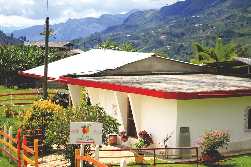 Finca Los Angeles. One of the many fincas who produce coffee around the hills of this region. July 2017