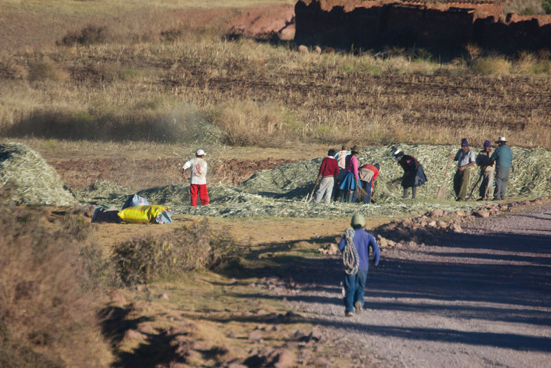 Working in the fields in the Sacred Valley, Peru<br /> Copyright 2012, Tom Farmer