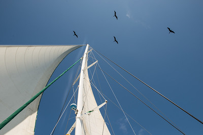 Rding the wind ... Galapagos