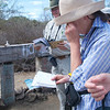 Checking the Mail, Floreana, Galapagos Islands