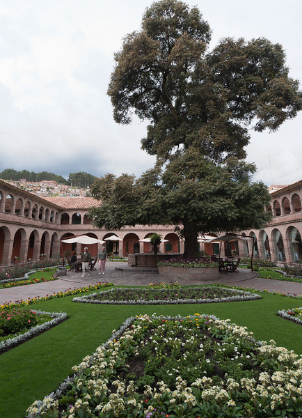 Cuzco's last Cedar tree is located in the courtyard at the Monesterio Hotel in Cuzco.