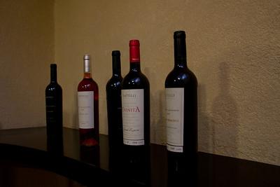Piatelli Vineyard, Mendoza, Argentina