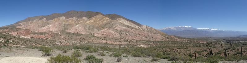 Desert in the Parque Nacional Los Cardones