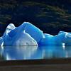 Iceberg on Lake Grey
