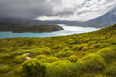 Lake Pehoe, Torres Del Paine National Park, Patagonia