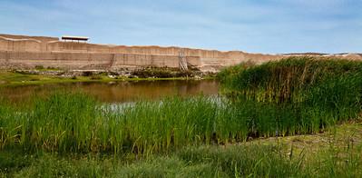 Sweet Water Oasis