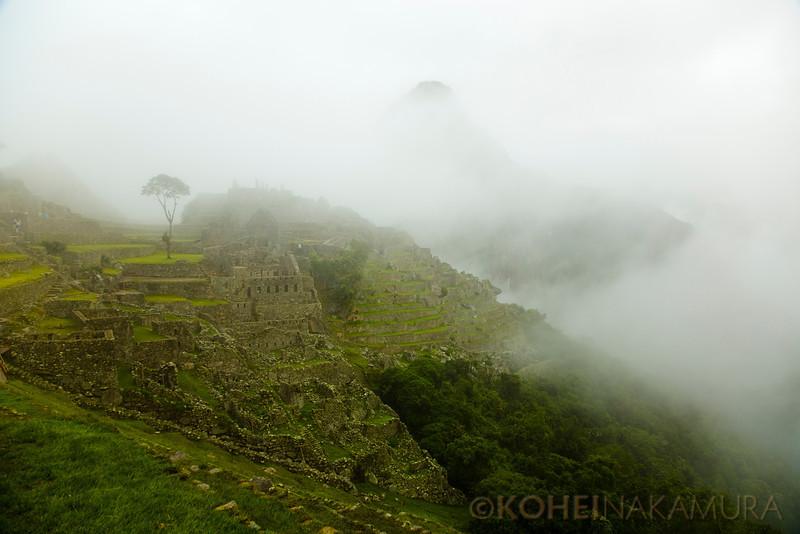 IMAGE: http://www.koheinakamura.com/Travel/South-America/Peru/i-CFddXNc/0/L/JX8R8315-L.jpg