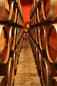 Wine Barrels in Baja Winery