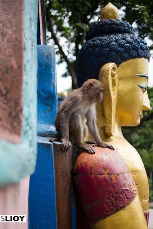 People watching at Swayambunath Monkey Temple in Kathmandu, Nepal.