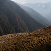 Terrace hillsides along the descent from Thume village along the Tamang Heritage Trail in Nepal.