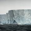 Tabular Iceberg on the way to South Georgia