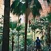 A gorge in the Bungle Bungles