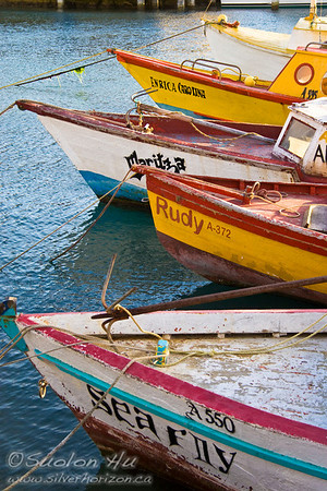 Fishing boats in the harbour of Oranjestad, Aruba