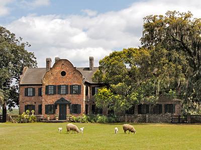 Middleton Place Estate