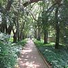 Hopelands Gardens - Aiken, SC - 5/15/10