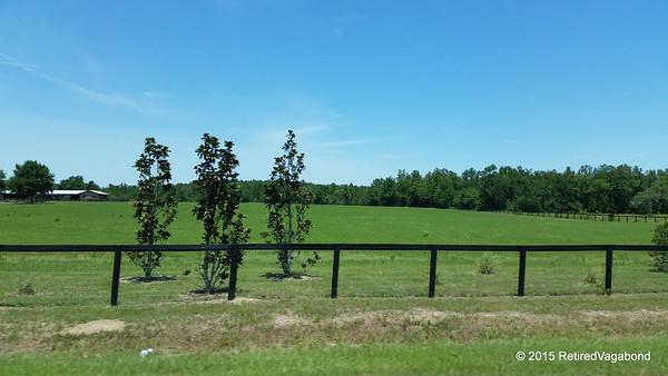 Highway Views - South Carolina