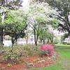 Street Park - Summerville, SC  3-27-11