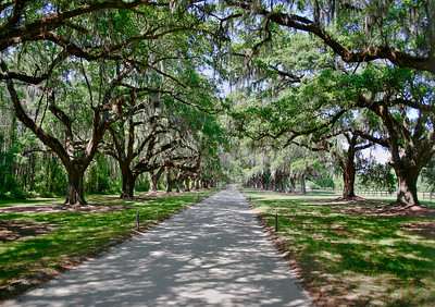 Boone Hall plantation, Mount Pleasant, S.C.