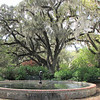 Live Oaks and Fountains - Breezes of Peace - Brookgreen Gardens, Murrells Inlet, SC  3-25-11