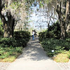 Three Roads Diverged in the Garden - Brookgreen Gardens, Murrells Inlet, SC  3-25-11<br /> My husband took the middle one.