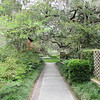 So Beautiful and Peaceful - Brookgreen Gardens, Murrells Inlet, SC  3-25-11