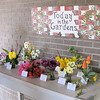 Display of What's Blooming Today - Brookgreen Gardens, Murrells Inlet, SC  3-25-11