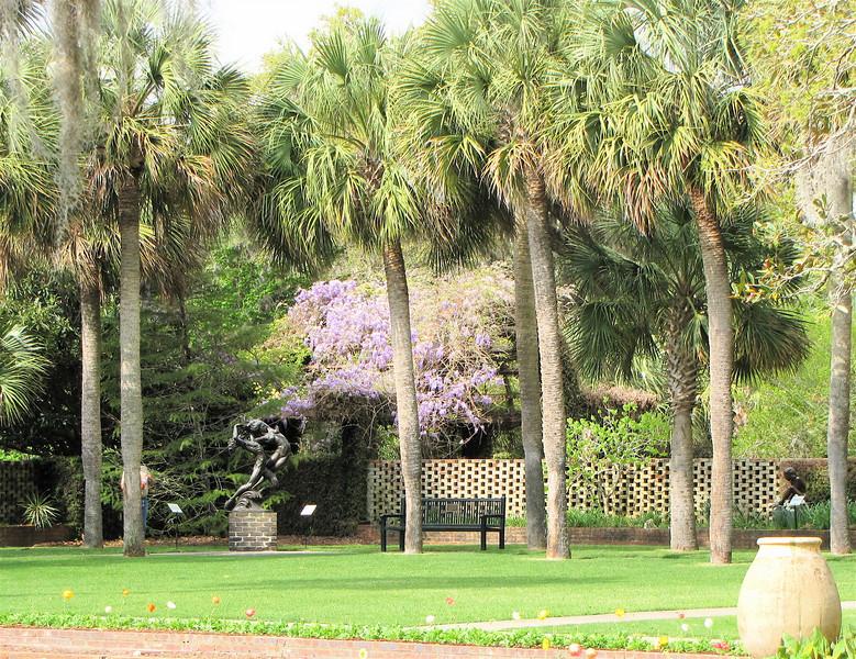 Wisteria Was Abundant But Managed - Brookgreen Gardens, Murrells Inlet, SC  3-25-11