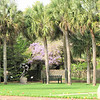 Wisteria Was Abundant But Managed - Brookgreen Gardens, Murrells Inlet, SC  3-25-11